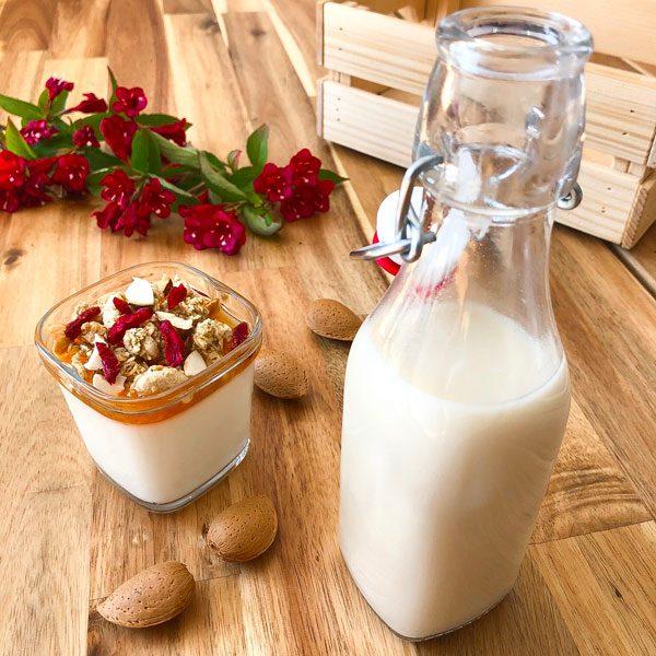 yaourt au lait d'avoine brassé amande confiture abricot muesli et goji