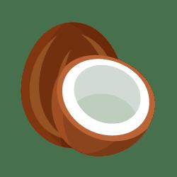 Coco ou riz-coco ❤