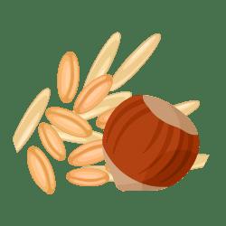 Riz-épeautre-noisette