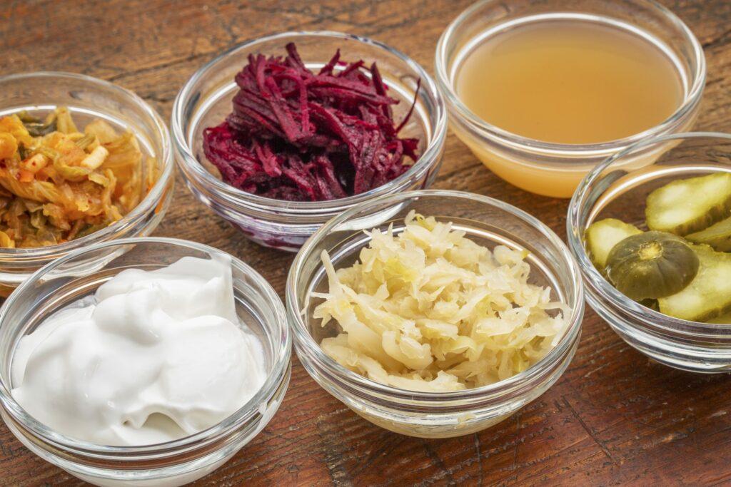 Aliments Fermentés : Kefi, Tempé, Koumiss etc.