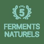 5 ferments naturels