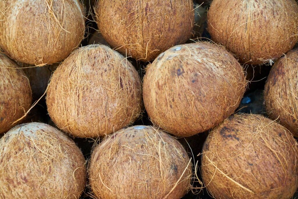 india-coconut-4141352_1920