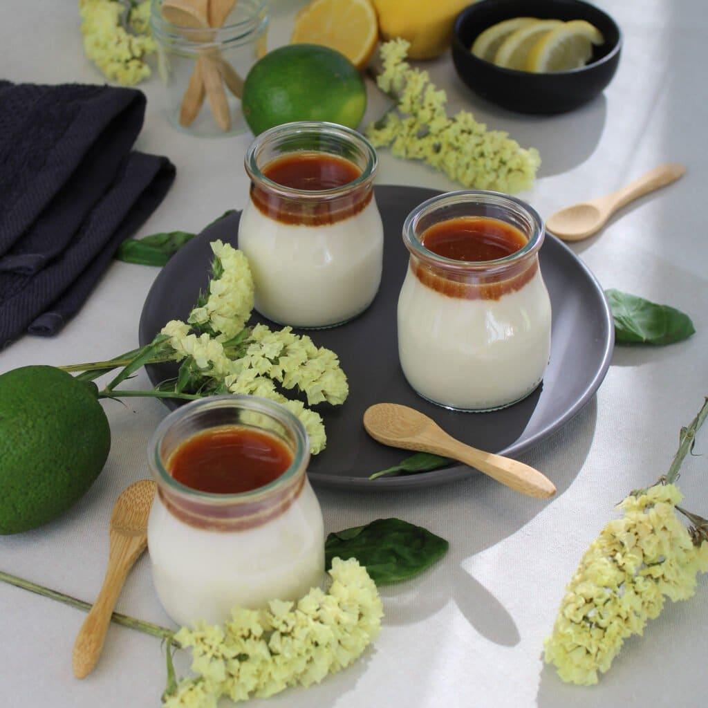 Un yaourt végétal ferme aux saveurs subtiles et originales, déouvrez l'alliance parfaite du citron et du basilic dans un dessert plein de goût !