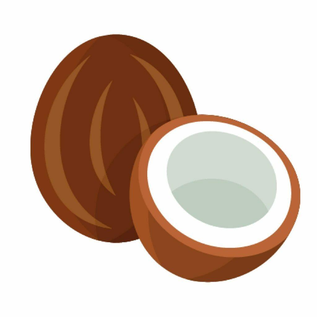 La recette originale du yaourt végétal au lait de coco par Brin de Foli ! Le partenaire de la pause déjeuner et du goûter !